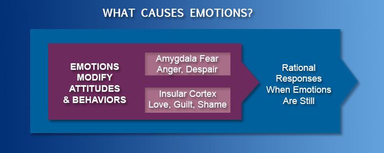 effectively stating emotions Used right, emotions can be a powerful communication tool  intellectual one,  high emotional intelligence helps us communicate more effectively  sometimes  this means delaying or stopping yourself from saying something.